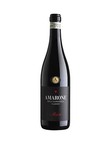 Magnum Amarone della Valpolicella Classico DOCG 2014 Allegrini